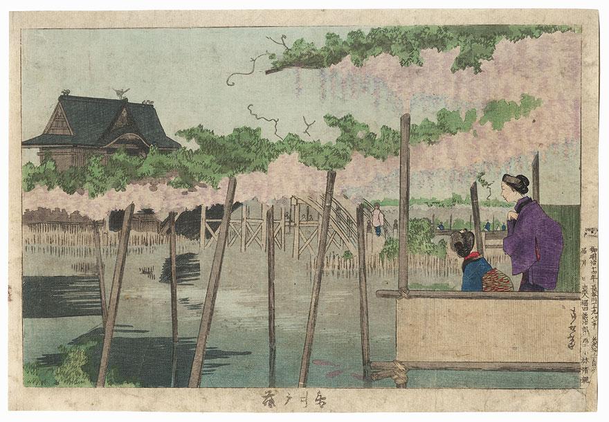 Wisteria at Kameido Tenjin Shrine, 1881 by Kiyochika (1847 - 1915)