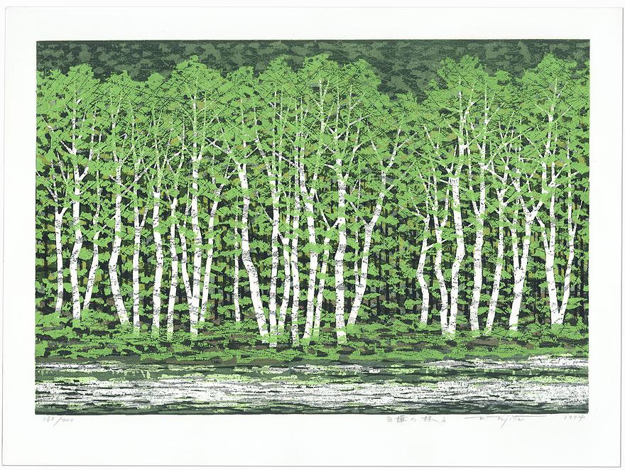 Japanese White Birch Woods, 1994 by Fumio Fujita (born 1933)