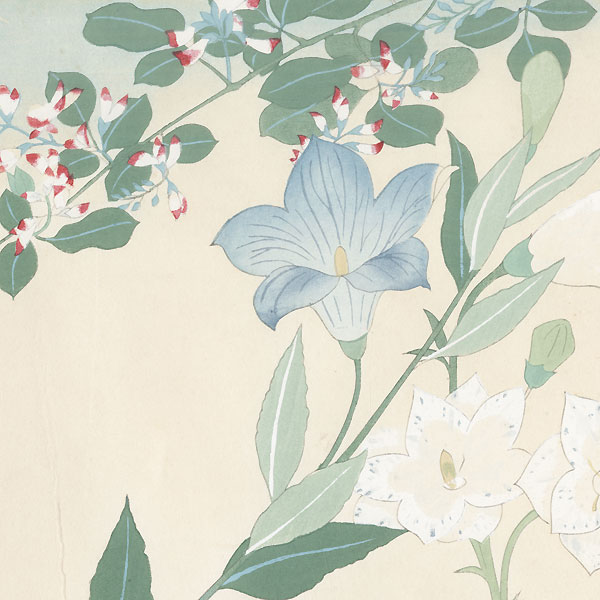 Bellflowers and Dragonfly, 1931 by Murakami Sadao (active early 20th century)