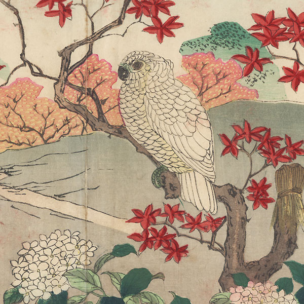 Cockatoo by Rinsai (1847 - ?)