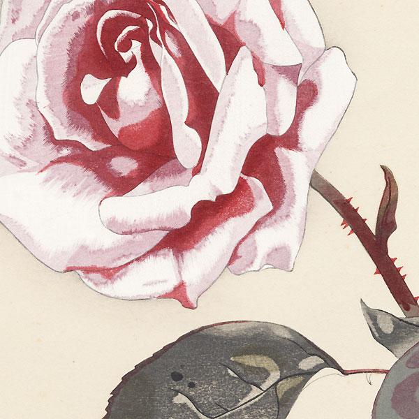 Rose by Rakusan Tsuchiya (1896 - 1976)