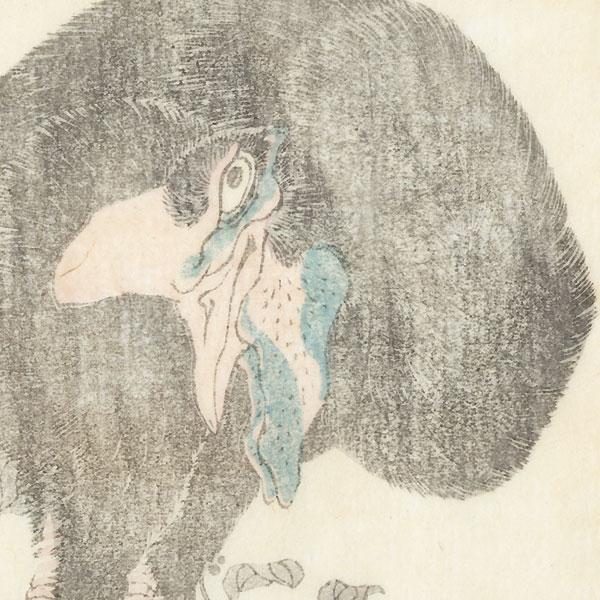 Ostrich by Hokusai (1760 - 1849)