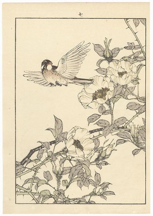 Single oban original - Spring Group, 1891 by Imao Keinen (1845 - 1924)