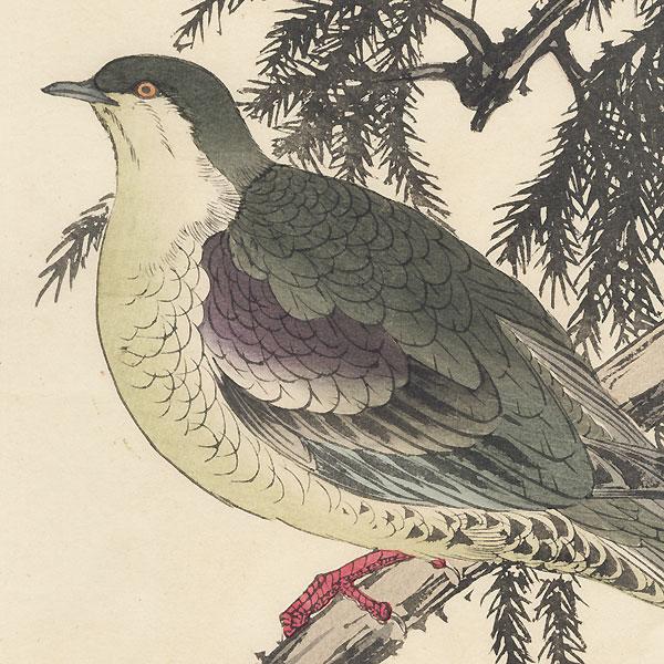 Single oban original - Winter Group, 1891 by Imao Keinen (1845 - 1924)