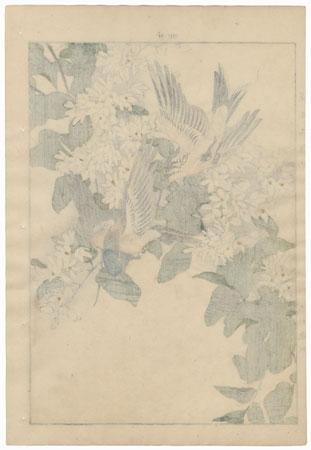 Single oban original - Summer Group, 1891 by Imao Keinen (1845 - 1924)