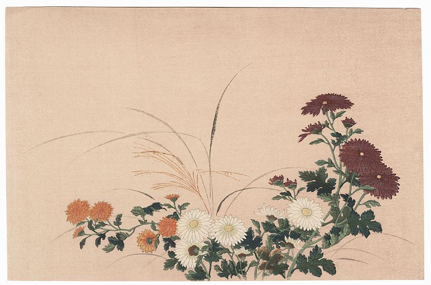 Chrysanthemums by Mitsuoki Tosa (1617 - 1691)