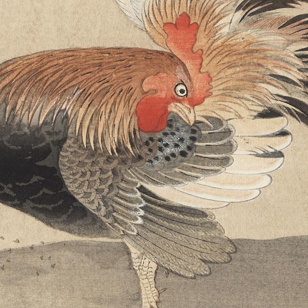A Cock by Naonobu Kano (1607 - 1650)