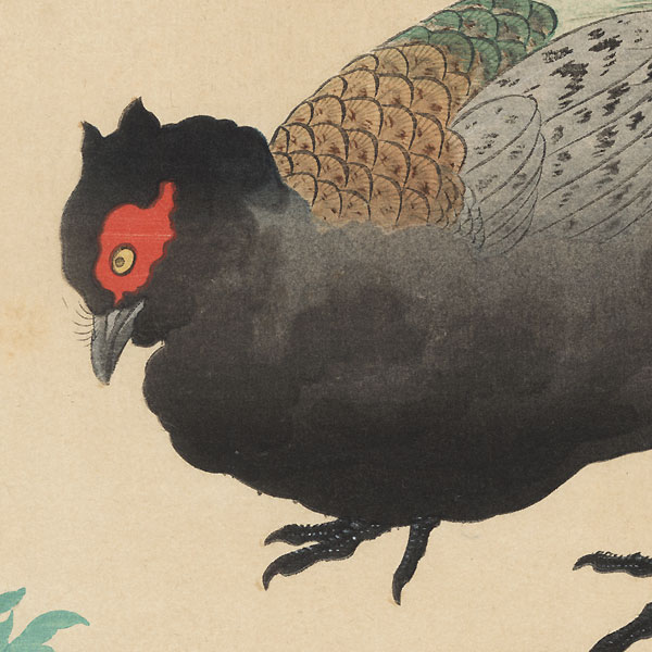 Pheasant by Sakai Hoitsu (1761 - 1828)