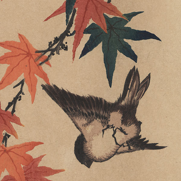 Sparrow and Maples by Katsushika Taito II (active circa 1810 - 1853)