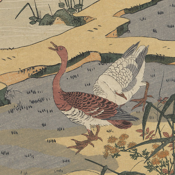 Geese and Rice Fields by Koryusai (1735 - 1790)