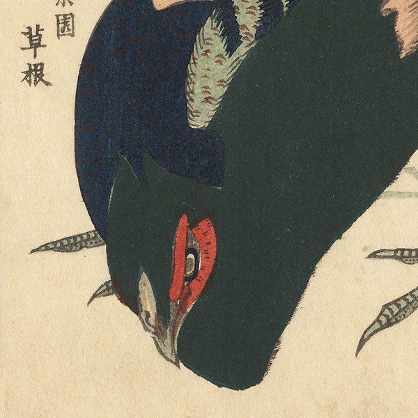 Pheasant Surimono by Hokkei (1780 - 1850)