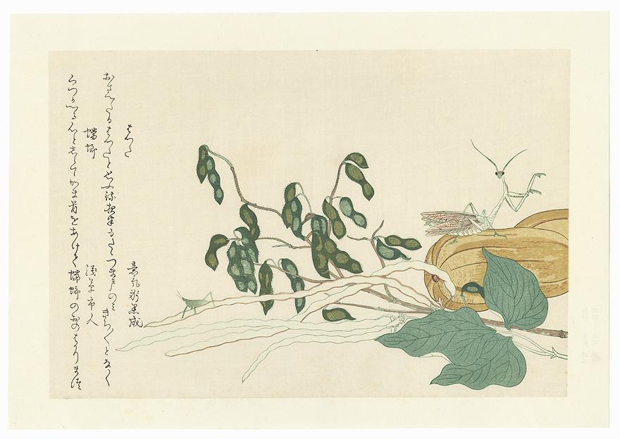 Cone-headed Grasshopper and Praying Mantis by Utamaro (1750 - 1806)