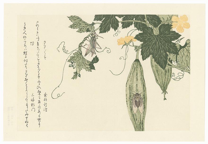 Grasshopper and Cicada by Utamaro (1750 - 1806)