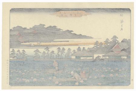 Lotus Pond at Shinobazu in Ueno by Hiroshige (1797 - 1858)