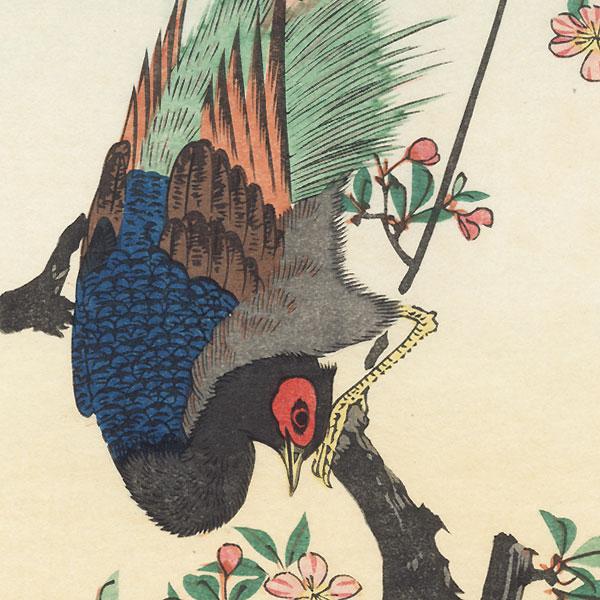 Pheasant by Hiroshige (1797 - 1858)