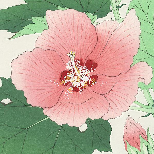 Hibiscus and Buds by Kawarazaki Shodo (1889 - 1973)
