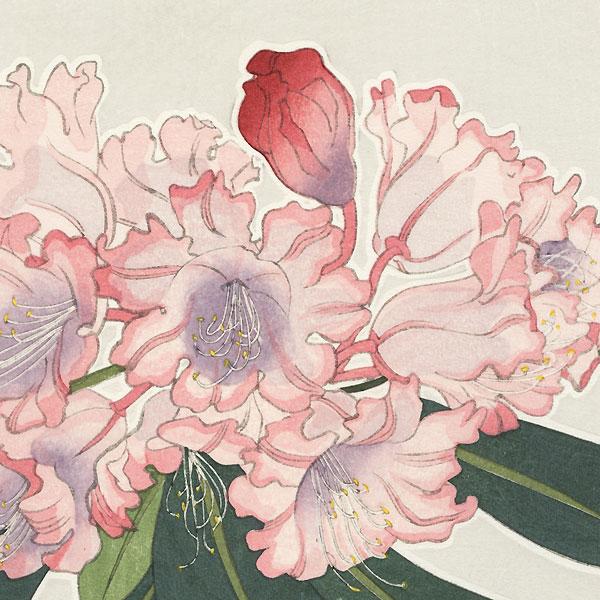 Tree Peony by Kawarazaki Shodo (1889 - 1973)