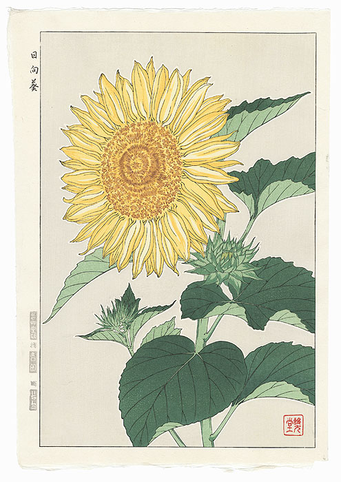 Sunflower by Kawarazaki Shodo (1889 - 1973)