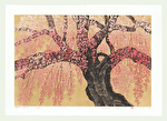 http://www.fujiarts.com/japanese-prints/Namiki/11WeepingCherry15f.jpg
