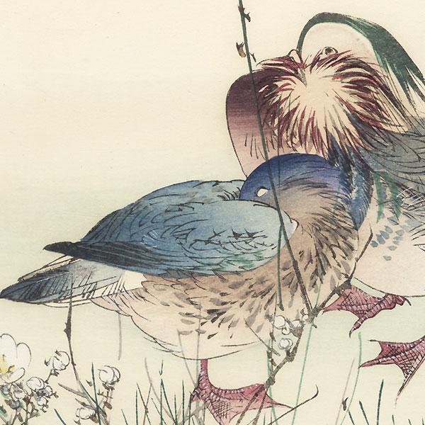 Ducks and Blossoming Plum, circa 1900 by Tsukioka Kogyo (1869 - 1927)