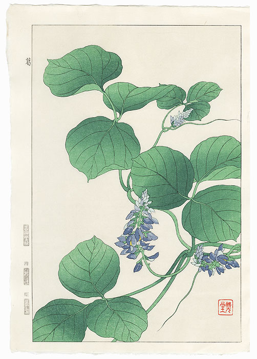 Japanese Arrowroot by Kawarazaki Shodo (1889 - 1973)