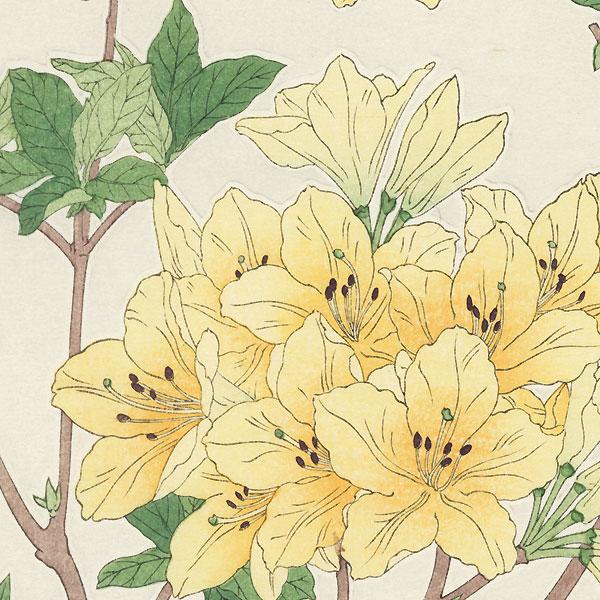 Yellow Azalea by Kawarazaki Shodo (1889 - 1973)