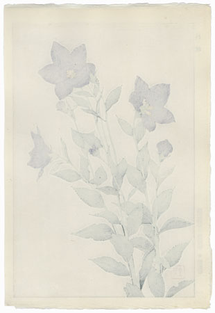 Bellflower by Kawarazaki Shodo (1889 - 1973)