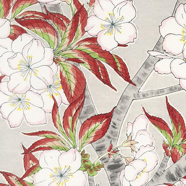 Yoshino Cherry Blossoms (Left) by Kawarazaki Shodo (1889 - 1973)