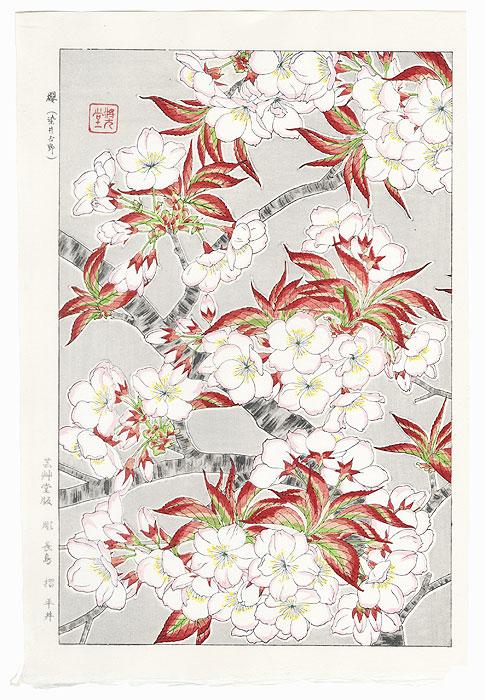 Yoshino Cherry Blossoms (Right) by Kawarazaki Shodo (1889 - 1973)