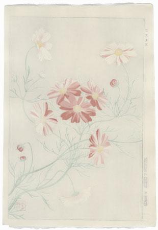Cosmos by Kawarazaki Shodo (1889 - 1973)