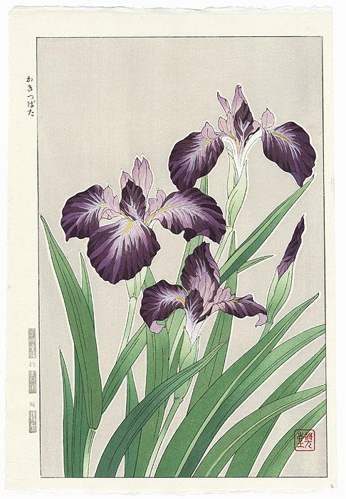 Purple Irises by Kawarazaki Shodo (1889 - 1973)
