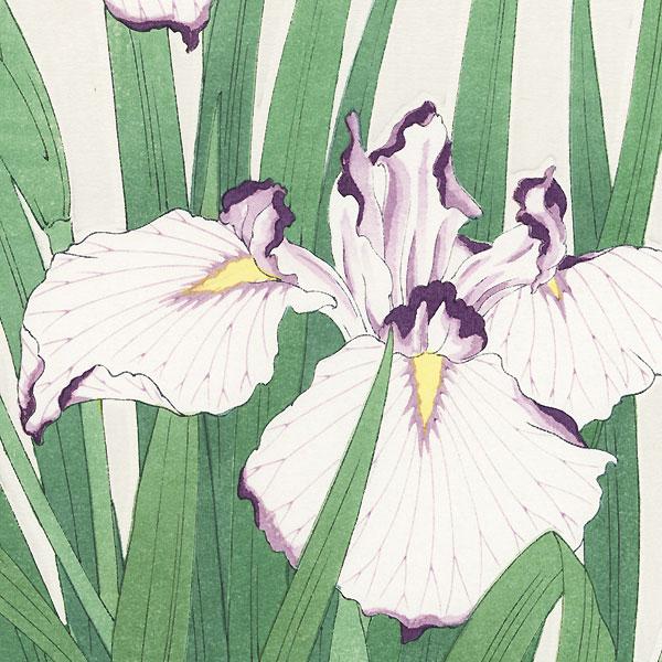 Purple-edged White Irises by Kawarazaki Shodo (1889 - 1973)