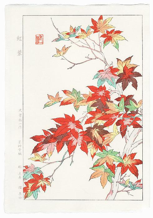 Maple by Kawarazaki Shodo (1889 - 1973)