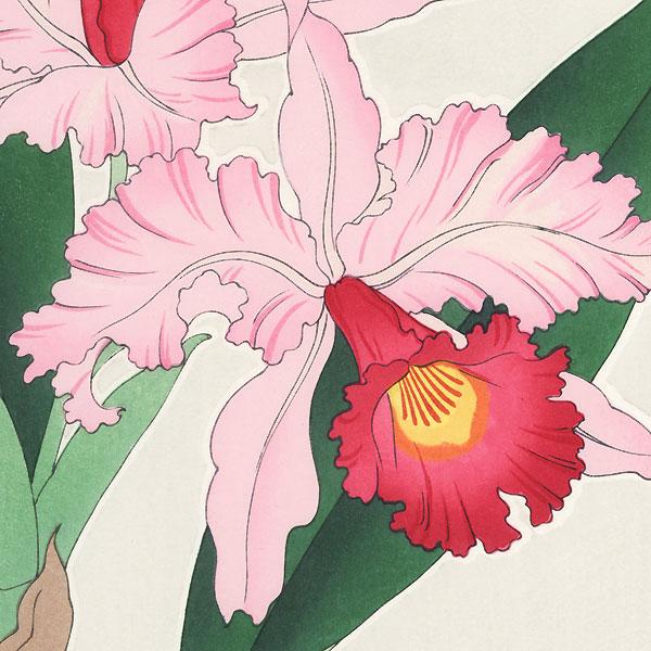 Pink Orchids by Kawarazaki Shodo (1889 - 1973)