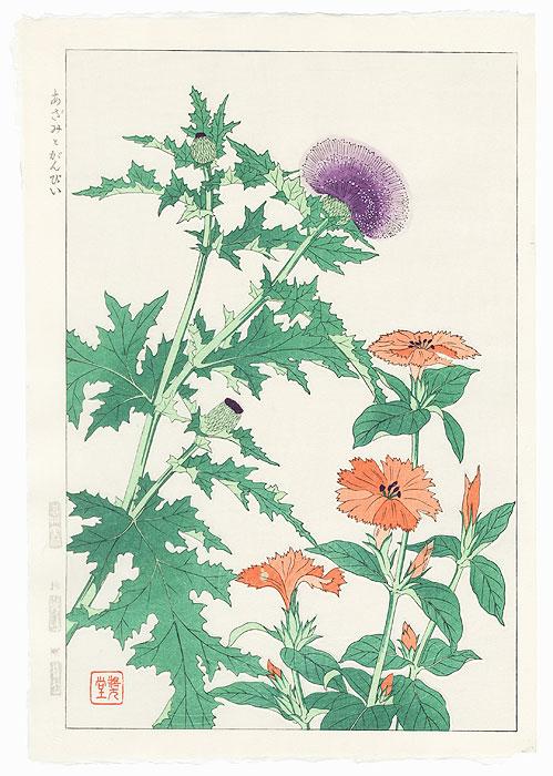 Thistle and Gampi by Kawarazaki Shodo (1889 - 1973)