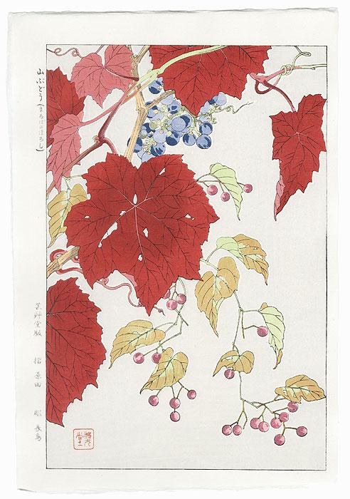 Wild Grape and Maruba-no-hiroshi by Kawarazaki Shodo (1889 - 1973)