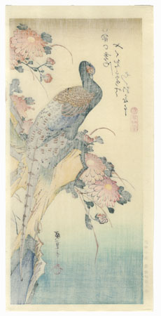 Pheasant and Chrysanthemums by Hiroshige (1797 - 1858)