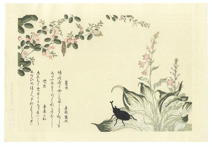 Bag Worm and Horned Scarab Beetle by Utamaro (1750 - 1806)