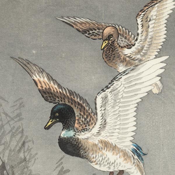 Ducks and Full Moon by Tsuchiya Koitsu (1870 - 1949)