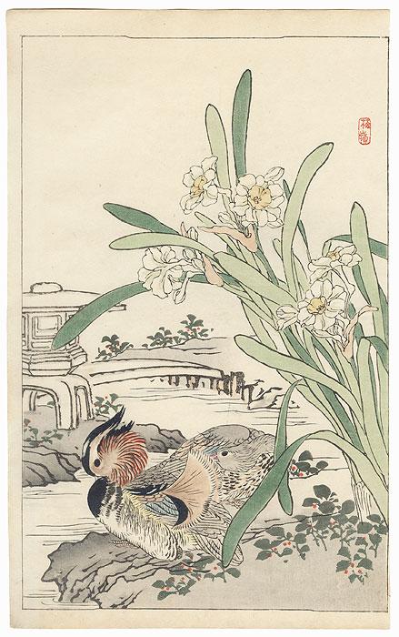 Mandarin Ducks and Narcissus by Kono Bairei (1844 - 1895)