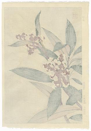 Loquat by Kawarazaki Shodo (1889 - 1973)